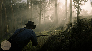 Red Dead Redemption 2 фото 2